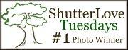 ShutterLove#1Award