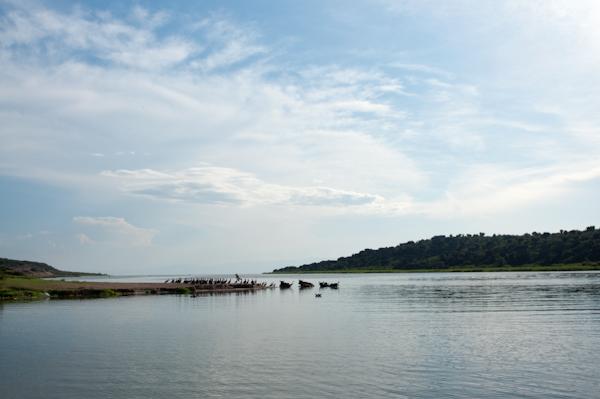 RYALE_Rwanda_Uganda_Safari-239