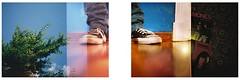 (Tambourine3) Tags: film analog 35mm iso200 lomo lca lomography alt doubleexposure branches converse ramones allstar carrete analgico pelcula dobleexposicin dptico lomocompactautomat fourcornerdark