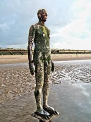 ~ (Andy Hay) Tags: sculpture beach statue statues antony 2008 gormley crosby antonygormley