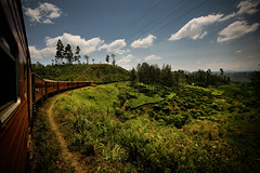 enroute to kandy (sgoralnick) Tags: travel vacation train landscape asia srilanka hillcountry southasia teaestates nuwaraeliya