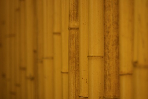 Bamboo Wall, Marriott Ihilani, Ko Olina, Oahu, Hawaii