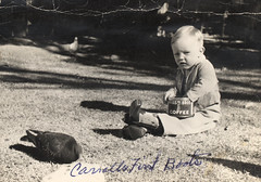 uncle carroll feeding pigeons (deflam) Tags: boy arizona coffee phoenix birds vintage cowboy feeding boots pigeons 1940s carroll gilmer hillsbros
