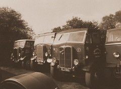 Wagons @ Winkleigh (Richie B.) Tags: devon hippo leyland aec winkleigh mammothmajor