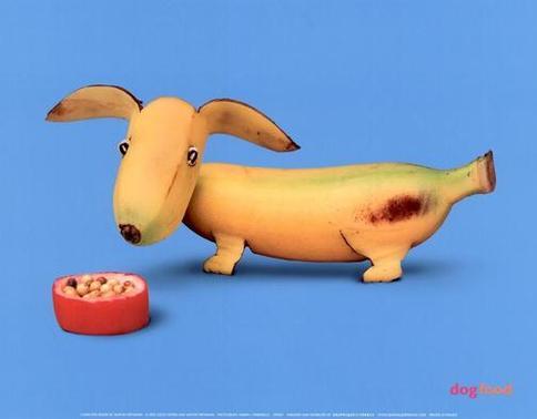 banana pup