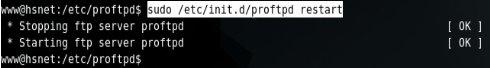 servidor-linux-ubuntu-server-proftpd03