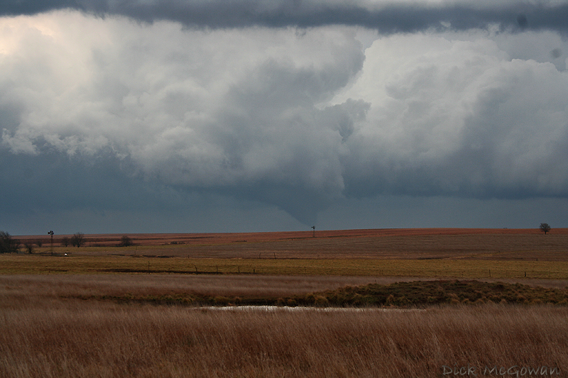 Cold-core tornado with mini supercell