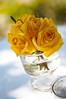 2704101399 b98c03a994 t Baú de ideias: Decoração de casamento amarelo