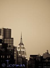 New York 101