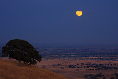 moonrise over antioch (Marc Crumpler (Ilikethenight)) Tags: california trees sunset usa moon night canon landscape lights twilight hiking trails silhouettes hills bayarea eastbay antioch blackdiamond ebrpd contracostacounty eastbayregionalparkdistrict canon70300isusm sfchronicle96hours 40d ebparks anawesomeshot canon40d goldstaraward