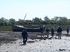A Pleasant walk along Strangford Lough (Kircubbin, United Kingdom) Photo