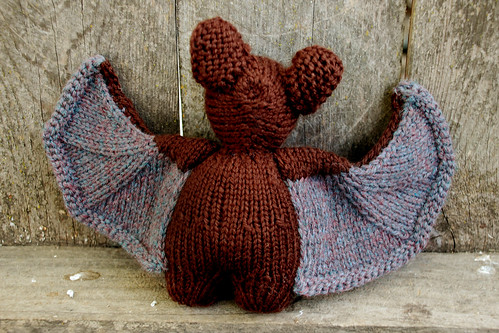 Brown Bat 3