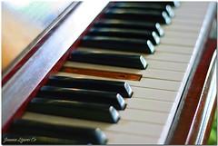 Do not shoot the pianist! (JoLiz) Tags: old broken keys interestingness missing key flickr piano explore pk top500 inspiredbylove explored pinoykodakero spiritofphotography joliz