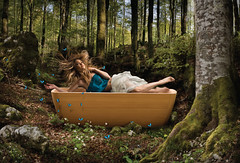 francoceccotti design (marcolucidi) Tags: wood nature illustration design tub enchanted madeinitaly mistery bosco botticelli fata ninfa illustrazione madrenatura francoceccotti