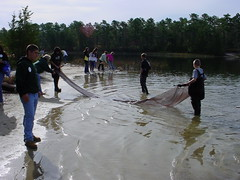 DSC00023 (prjhsmediacenter) Tags: experience pinelands 2008