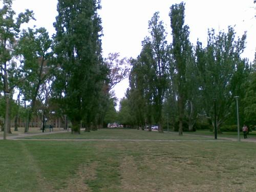 ANU avenue