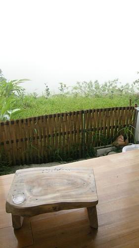 05.小陽台外就是綠草如茵