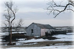 Desolation (lynne_b) Tags: winter snow cold building ice window nature weather barn rural fence illinois frost seasons farm shed freezing structure archives frigid firstplacewinner twtme dailyherald