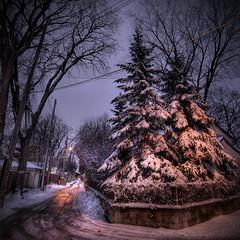 Another Wolseley Winter (bryanscott) Tags: winter winnipeg manitoba lane hdr wolseley