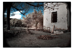 Where once we were () Tags: white black 350d spain pego neilrobinson orangegroves