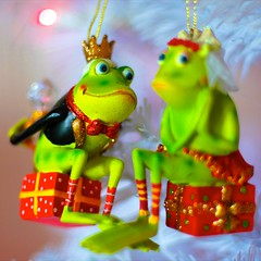Just exactly what DOES happen when you kiss a toad? (Abby Lanes) Tags: christmas love smile engagement couple engagementring frog ring diamond ornament toad present bling sweetheart engaged bigdiamond gettingengaged myornaments igotengagedondec61996