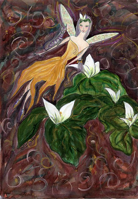 Botanical Prints - Trillium grandiflorum limited edition Giclee