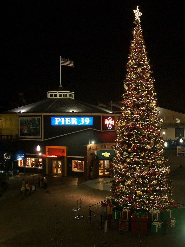 Pier 39 Holiday Tree