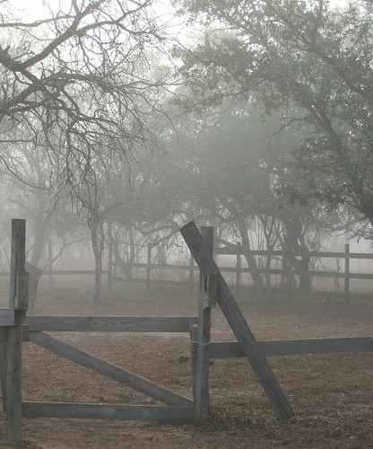 Corral in the fog