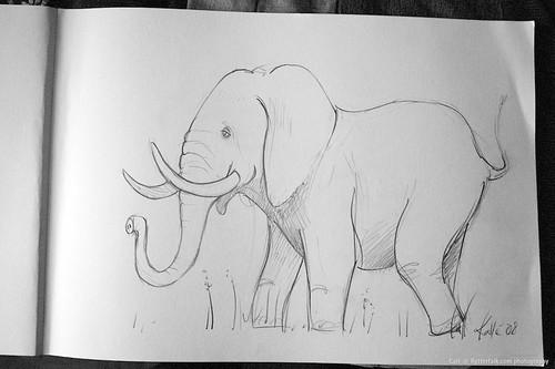 elefant - teckning