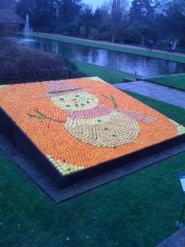 Earlier this month we went to Wisley to meet Father Christmas. On the way we met this citrus Snowman