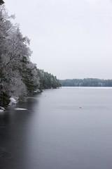 DSC02730 (niclasmaanson) Tags: christmas trees winter vacation sky tree ice nature water zeiss lens vinter nice december sweden sony carl sverige dslr scandinavia milky askersund a700 cz1680 sikudden niclasmnsson laxsjn stralaxsjn