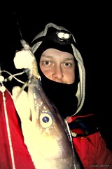 No Limit (Nicolas Valentin) Tags: david night scotland fishing marine eel conger lochlong congereel seafishing 16209
