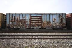 SIKSTE | SINEK (grbenching) Tags: railroad train bench photography graffiti steel trains graff railyard freight boxcars freights rollingstock freeart sinek benching sikste