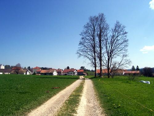 Our Swiss Village