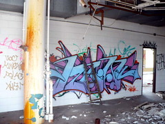 ROWN (Billy Danze.) Tags: chicago abandoned graffiti illinois factory candy xmen jem leek gem aom cmk polack rown kinex brachs rownone