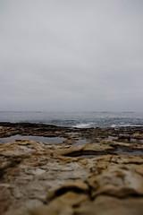down in the tide pool (Lisa{santacrewsgirl}) Tags: california cliff santacruz lighthouse beach point tidepools naturalbridges scphotosafari