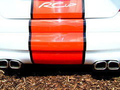 Peugeot 207 RCup Rear (Marc Sayce) Tags: hot cup car festival speed 2006 racing r motor hatch concept gti peugeot goodwood hillclimb motorsport 207 rcup