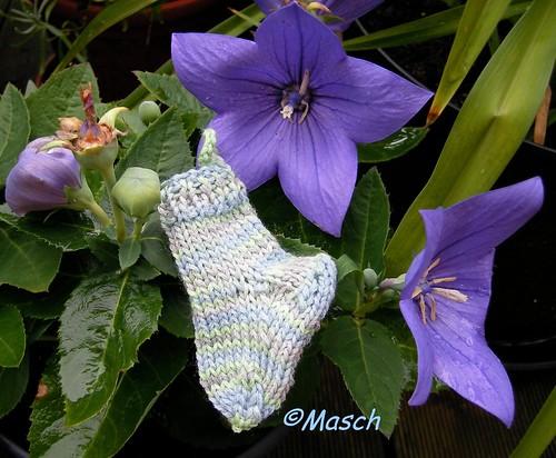 Greeny Socks 010