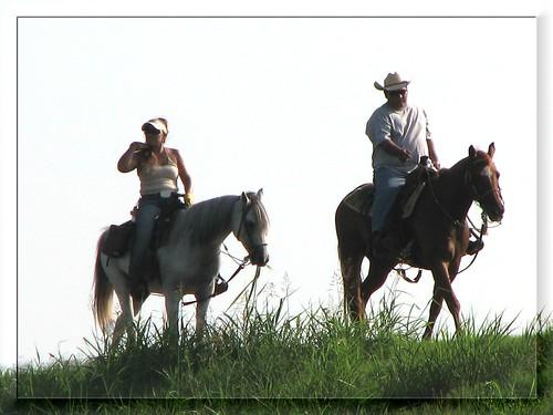 horse couple frame