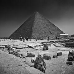 Do I Look Good ? (Khaled A.K) Tags: blackandwhite bw photography pyramid egypt cairo camel canoneos350d khaled giza bnw sigma1020mm 10mm sigma1020 kashkari