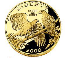 2008 Bald Eagle