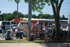 Lisle Illinois Farmers Market 066