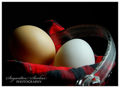 DSC_4963c (Sayantan Sarkar - The Glamor Factory) Tags: stilllife food white chicken basket eggs product 2008 tabletop yolk stockphoto eggwhite nikond200 photostock photosforsale globalphotography sayantansarkarphotography framezunlimited forsale commercialstock nikkor18135mm mycollection sayantansarkararchive theglamorfactory artdirectorschoice stockimagesforsale personalphotodatabase sayantansarkarphotographyfullcollection glamorfactoryimagegallery indianphotographersphotosforsale
