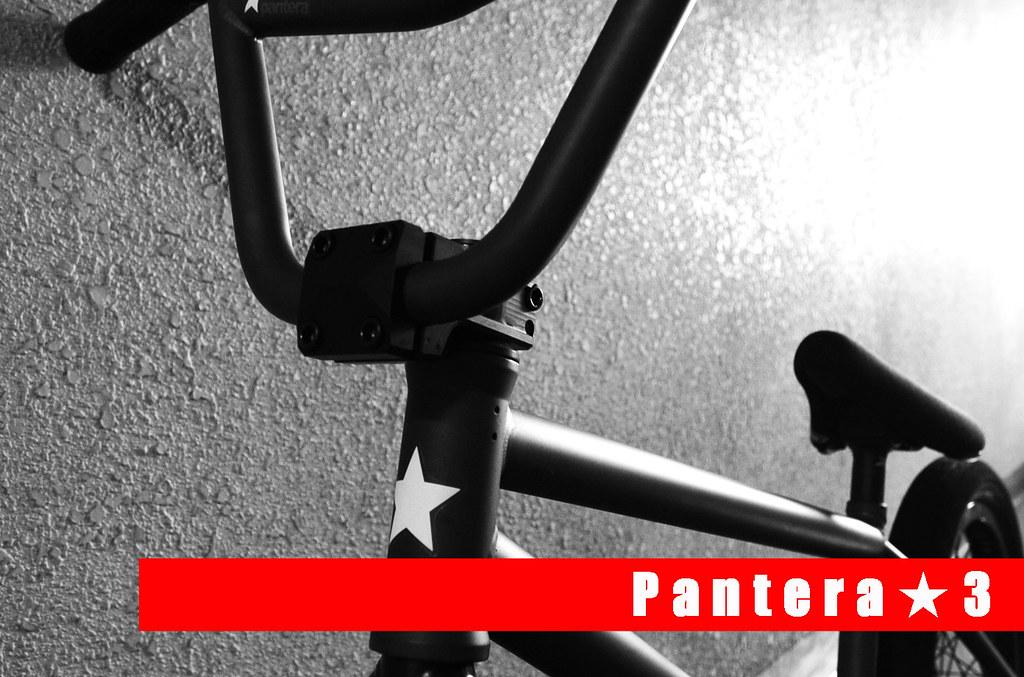 flybikes Pantera★3 01