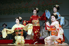 Kyo Odori:  A Brilliant Brocade of Chrysanthemums (mboogiedown) Tags: travel people girl beauty japan asian person japanese dance interestingness spring interesting kyoto asia traditional performance culture explore maiko geiko geisha kyo kimono obi kansai odori kikuyu miyagawa miyagawacho kyomai i500 fumisono kimichie tanewaka