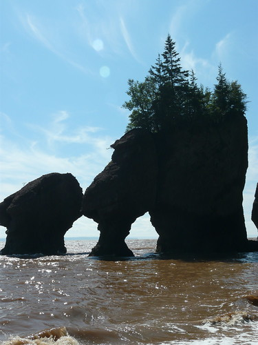 Bay of Fundy's Hopewell Rocks by animaltourism.com, on Flickr