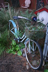 Old bicycle used as a garden planter (Gardening in a Minute) Tags: art oregon garden portland whimsy unique container eclectic whimsical krt giam nancyland gwa2008