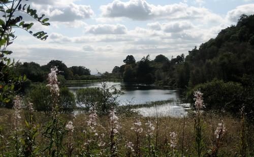Cuffhill reservoir