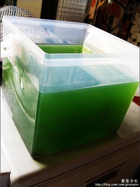 超濃縮綠水-2