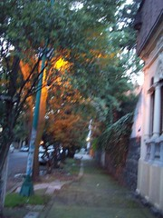 102_0231 (cas is king) Tags: df coyoacan cas
